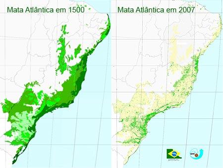 Mata-atlantica-1